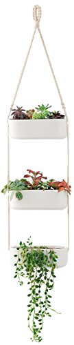 3-tier plant holder for hanging plants