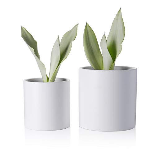 Greenaholics Plant Pots - 5.9 + 4.7 Inch Matt Ceramic Planter with Drainage Hole for Flower, Cactus, Succulent Planting, Set of 2, White