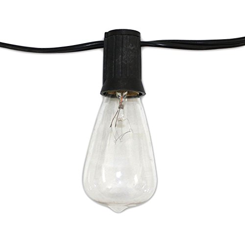 String Light Company Edison Vintage 48-Ft String Lights with 24 Sockets and 24 Clear Nostalgic Edison Bulbs, 18 Gauge Black Cord