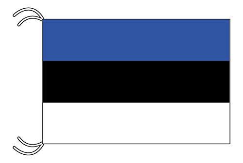 TOSPA エストニア国旗MLサイズ 45×67.5cm テトロン製