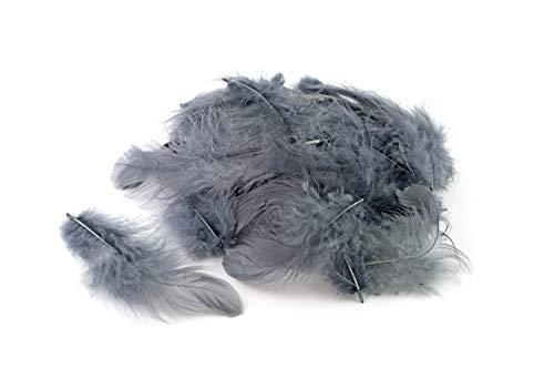 5g Bastelfedern 5-10cm (silber/grau 077) // Dekofedern Hühnerfedern Marabu Federn Schmuckfedern Marabufedern