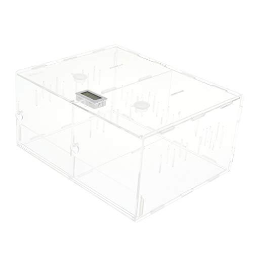 perfk Terrarium Zuchtbox Fütterungsbox für Reptilien, Spinnen, kleine Wasserschildkröte, Frosch, usw. - Doppel-Lagerhaus Box