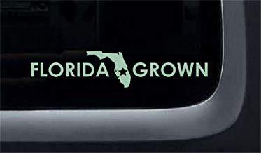 Vivityobert Pegatinas de pared inspiradoras Citas Florida cultivadas para coche