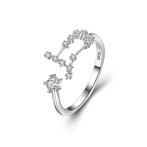 """BriLove 925 Sterling Silver CZ Statement Ring for Women -""""Gemini"""" 12 Constellation Astrology Horoscope Zodiac Adjustable ring"""
