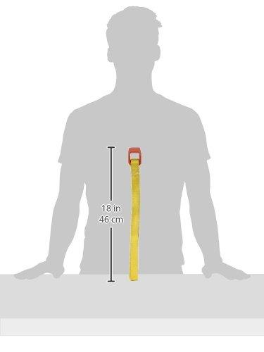 Ridgid 31355 2-Inch Plastic Pipe Strap Wrench