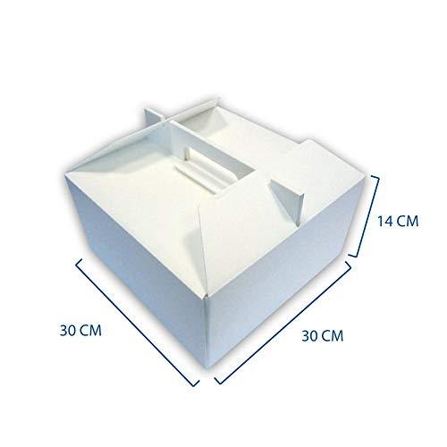 Box Gel - 10 cajas térmicas para el transporte de tartas, helados y repostería, 30x 30x14cm,de poliestireno