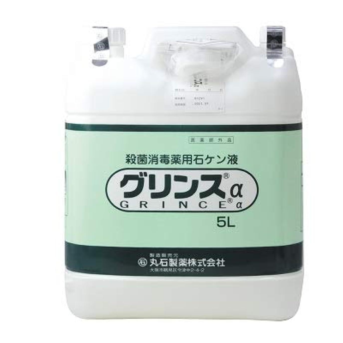 タンパク質スラム打たれたトラック【丸石製薬】グリンス 5L