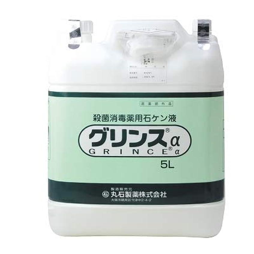 価格コスト却下する【丸石製薬】グリンス 5L