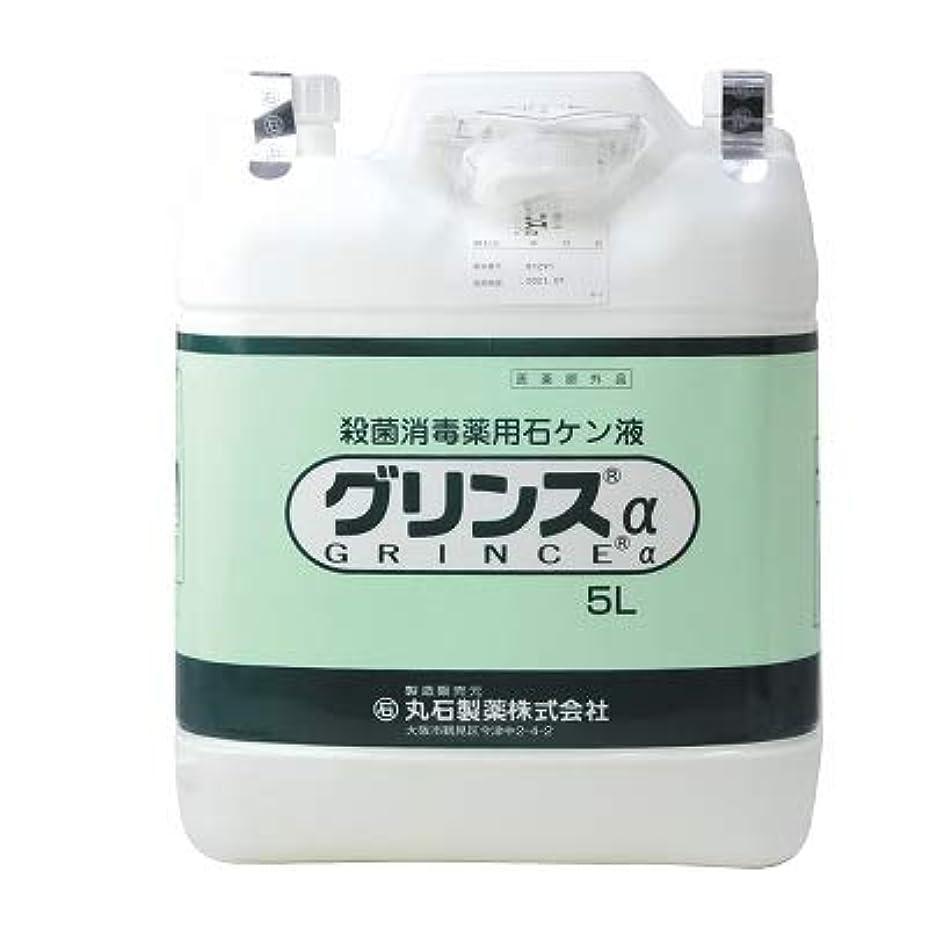コンクリートのれん皮【丸石製薬】グリンス 5L