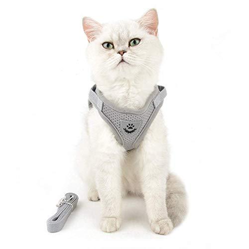 NEEZ Katzengeschirr mit Langer Leine für kleine & große Katzen sowie für kleine Hunde und Welpen I Katzen Geschirr für Kitten verstellbar - S