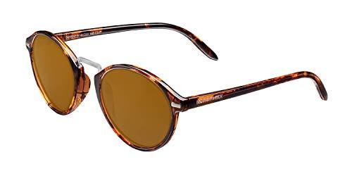 NORTHWEEK VESCA Gafas, Tortoise Brown - Ambar, Adulto Unisex Adulto