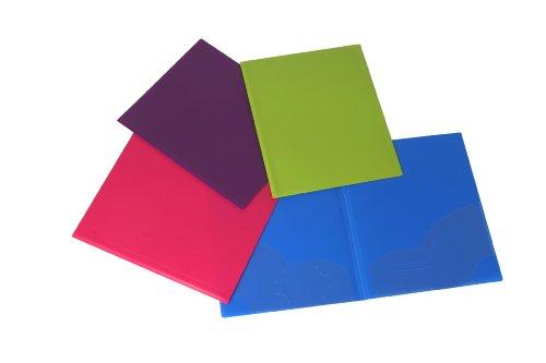 Filexec 50121-3198, 2-Pocket Ordner, Visitenkarten-gestanzt, sortiert, 12 Stück