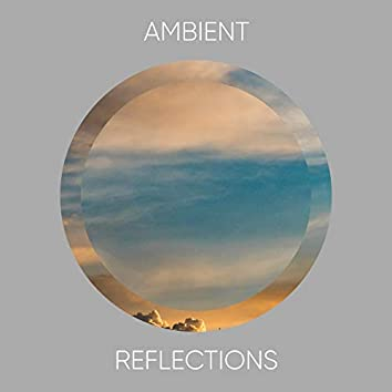 #Ambient Reflections