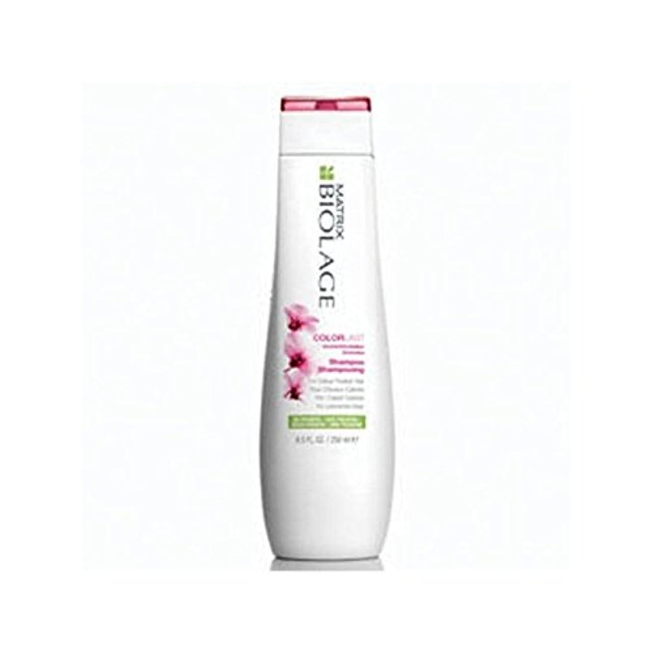 遊び場ミント疼痛マトリックスバイオレイジのシャンプー(250ミリリットル) x4 - Matrix Biolage Colorlast Shampoo (250ml) (Pack of 4) [並行輸入品]