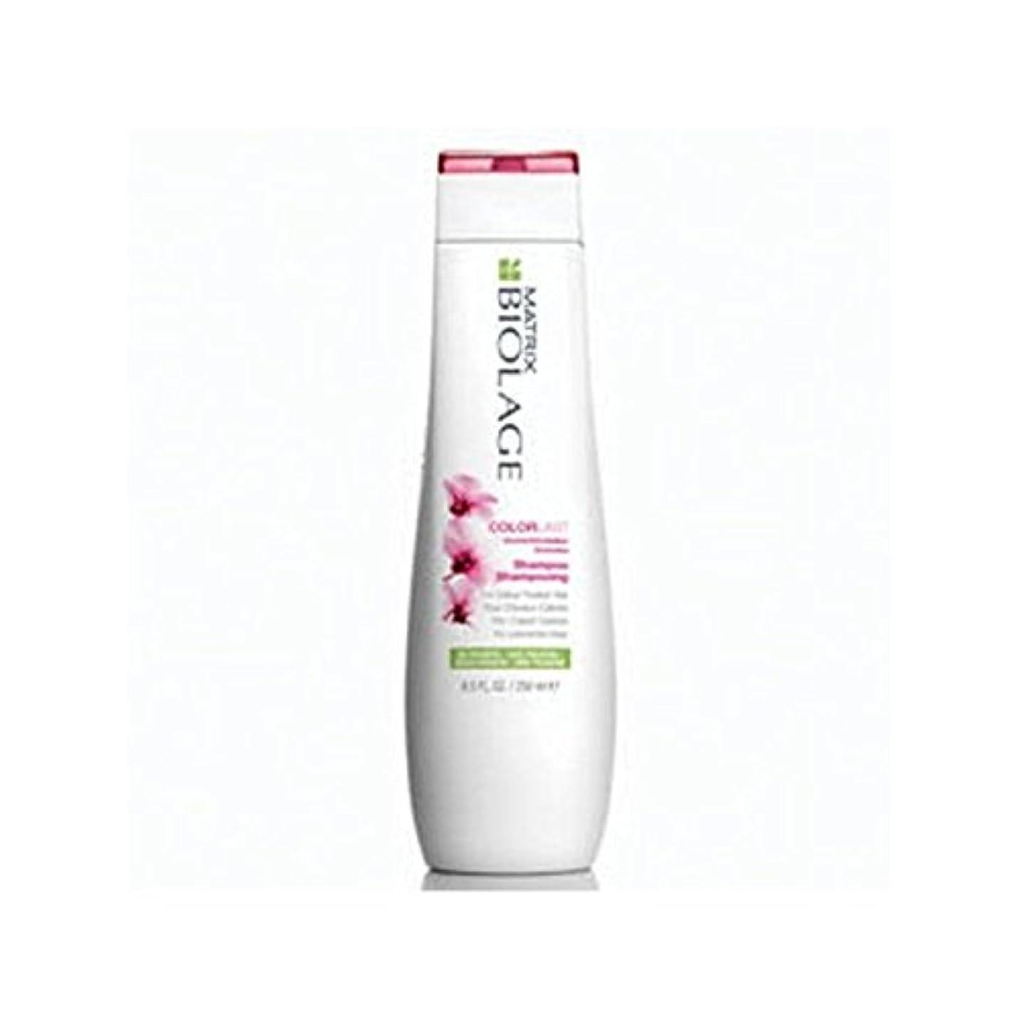 細部ちらつき住居マトリックスバイオレイジのシャンプー(250ミリリットル) x4 - Matrix Biolage Colorlast Shampoo (250ml) (Pack of 4) [並行輸入品]