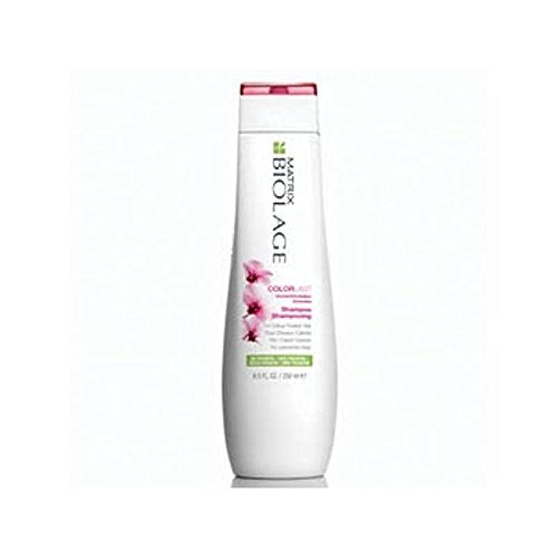 精神重々しいお香マトリックスバイオレイジのシャンプー(250ミリリットル) x4 - Matrix Biolage Colorlast Shampoo (250ml) (Pack of 4) [並行輸入品]