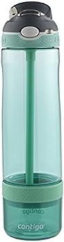 Contigo Autospout Straw Ashland 26 oz Water Bottle with Infuser