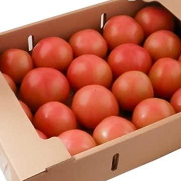 【熊本県他西日本産】 とってもあま~い トマト 約4kg 1箱
