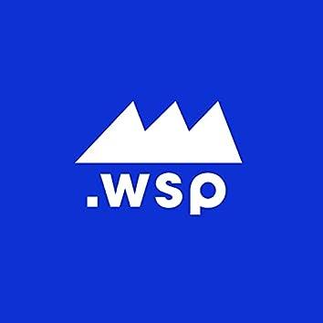 .wsp 001