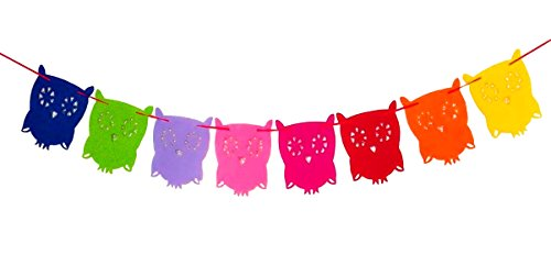 Owl Pal Party Themed Decorations Kit, Birthday Party Supplies, Birthday Party Banner, Set of 8 Pieces Colorful Owl Flags