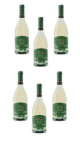6 Bottiglie di Müller Thurgau Vigneti delle Dolomiti IGT