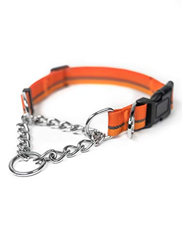 Mighty Paw Martingale Dog Collar 2.0 | Trainer Approved Limited Slip Collar with Stainless Steel Chain & Heavy Duty Buckle. Modified Cinch Collar for Gentle & Effective Pet Training (Orange)