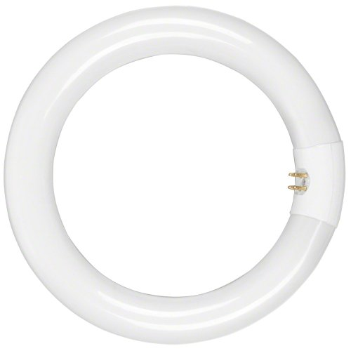 walimex - Lámpara para Anillo de luz Beauty (22 W)