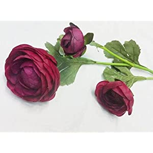 Artificial and Dried Flower 60cm Artificial Ranunculus Asiaticus Flower Fake Persian Buttercup Silk Flowers Tea Rose Decorative Flowers – ( Color: Wine Red Tea Rose )