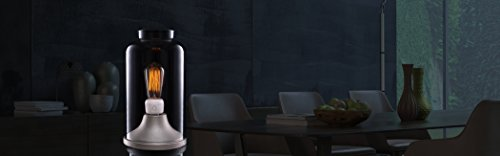 emberlight Socket, Wi-Fi Smart Light Bulb Adapter, White, Compatible with Alexa