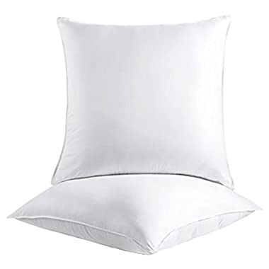 Splendid Collection Euro Square Pillows, 2-Pack 26-by-26 Inch