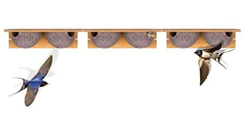 3x Schwalbennistkasten Doppelnest Schwalbennest Mehlschwalbennest Nistkasten Nisthilfe Schwalben Holzbeton