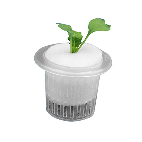 Ironhorse Kunststoff-Hydrokultur-Netz-Topf, Blumentopf, Pflanzgefäß für Hydrokultur, Garten, Balkon, Pflanzschwamm, gute Wasseraufnahme.