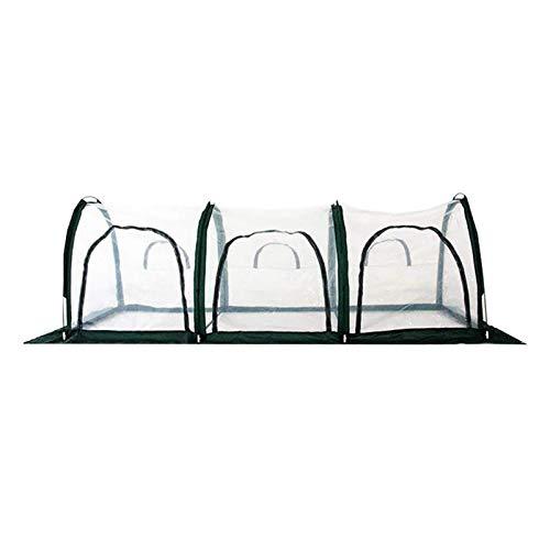 Greenhouse 3M X 1M Vollstahlrohr Stahlrahmen Poly Tunnel Gewächshaus Polytunnel Tunnelbereich