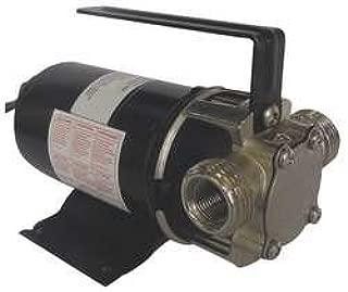 Dayton 5UXN0 Utility Pump 12VDC
