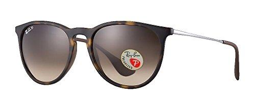 Ray Ban Erika Sunglasses (Brown Frame Polarized Brown Lens, Brown Frame Polarized Brown Lens)