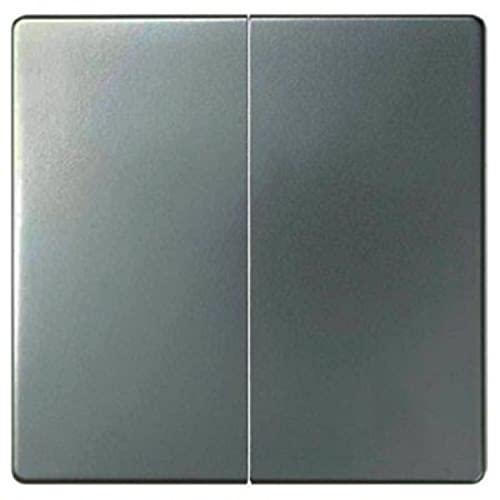 Tecla doble para mecanismos de mando, serie 82 Concept, 1 x 5,5 x 5,5 centímetros, color titanio (referencia: 8200026-096)
