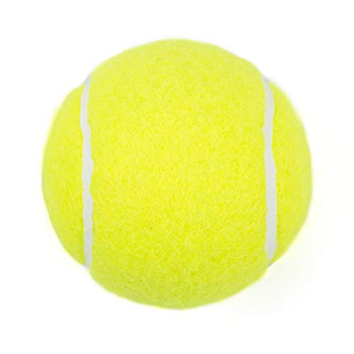 Tebery 20 Pack Green Advanced Training Tennis Balls Practice Ball with Mesh Carry Bag
