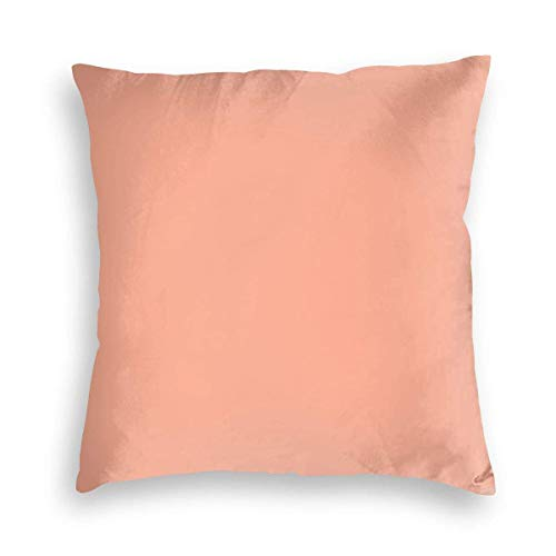 MayBlosom Simply Sweet Peach Comforters Velvet Soft Decorative Square Throw Pillow Covers Cushion Case Pillowcases for Sofa Chair Bedroom Car 18X18inch