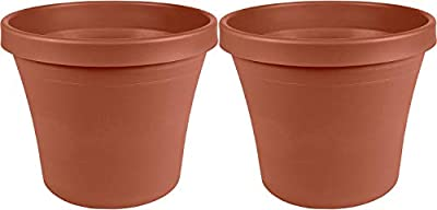 "Bloem Terra Pot Planter 16"" Terra Cotta"
