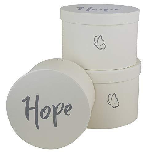 Juego de 3 cajas de almacenamiento redondas con tapa, texto en inglés «Best for you y Hope», caja decorativa con y sin rayas, diseño de flores en diferentes colores (crema)