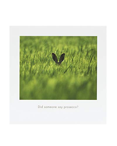 Comedy Wildlife Photography Awards – Lustige Tier-Geburtstagskarte – Ideale Geburtstagskarte für Sie, Geburtstagskarte für Ihn, Humorvolle Geburtstagskarte – Prosecco