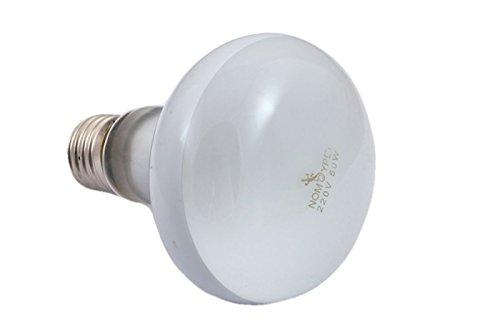 BES 17364 Lampada Lampadina E27 Terrario Rettili Serpenti Tartarughe Luce UV B Day 100W