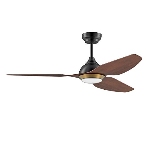 """reiga 50"""" WIFI Smart DC Motor Ceiling Fan with LED Light Kit Work with Alexa Google Home Apps Remote Control (Hand-painted)"""