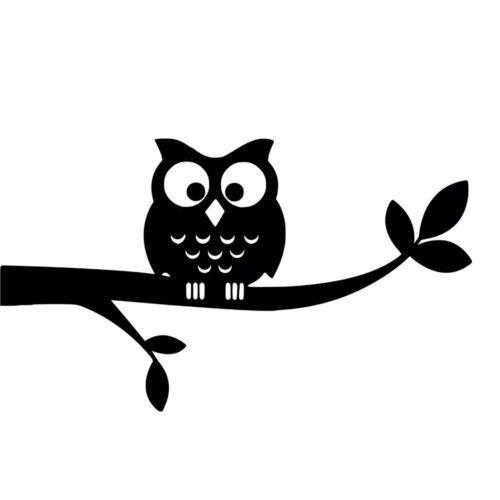 Owl on Branch Vinyl Decal Sticker Graphic Wall Laptop Hoot Bird Cartoon Wise, Die Cut Vinyl Decal for Windows, Cars, Trucks, Tool Boxes, laptops, MacBook - virtually Any Hard, Smooth Surface (Ranger Little Bird)
