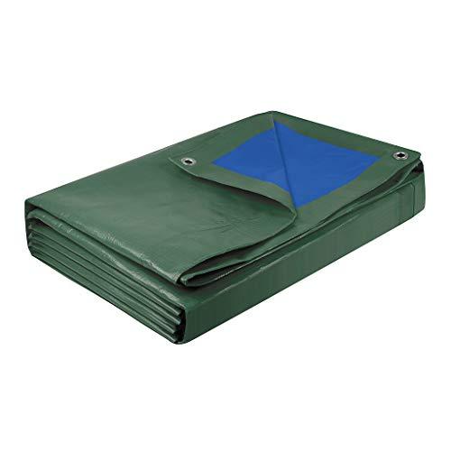 Cogex 082723 BACHE Lourde 6 X 10 6x10 mètres, Bleu/Vert