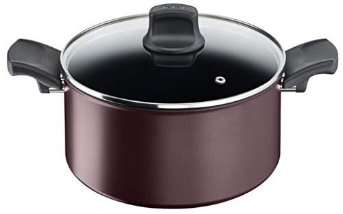 Tefal Character C6874602 Cacerola 24 cm Antiadherente Apta para Todo Tipo de cocinas e inducción, Titanio Extra Duradero