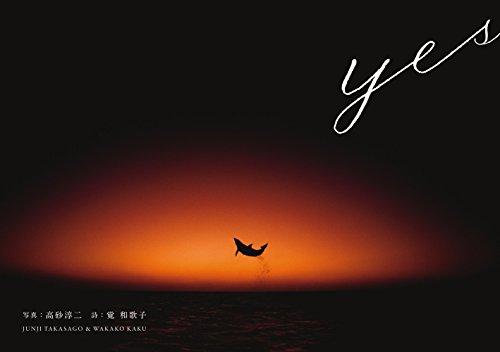 yes (小学館SJ・MOOK)