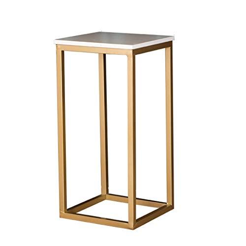 ZWD huishoudbloemenstandaard, marmeren oppervlak metalen houder binnenbloem staande plaats multifunctionele plank huishal