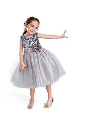 ELSA & ANNA® Top Qualität Mädchen Prinzessin Kleid Hochzeits Partei Kleid Verrücktes Kleider Brautjungfer Kleid Weihnachtsfest Kleid Partei Kostüm Outfit DE-GRY-PDS02 (2-3 Jahre, PDGRY02)