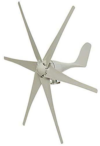 Haosan Wind-Generator, 5000W 12V / 24V / 48V 6 Blatt-Schwarz-Windkraftanlagen Horizontale Startseite Powers Windmühle Energieanlagen Lade,Weiß,48V